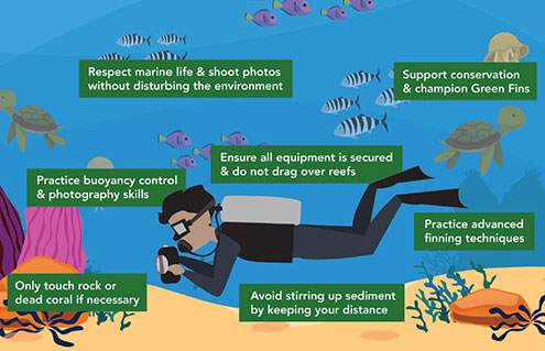 7 Things Divers Must Do