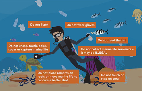 7 Things Divers Must Not Do