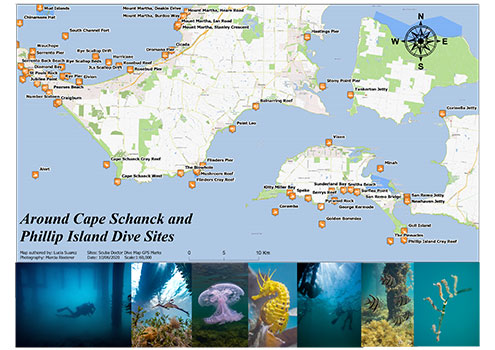Around Cape Schanck and Phillip Island Dive Sites