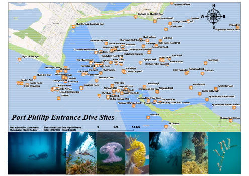 Port Phillip Entrance Dive Sites
