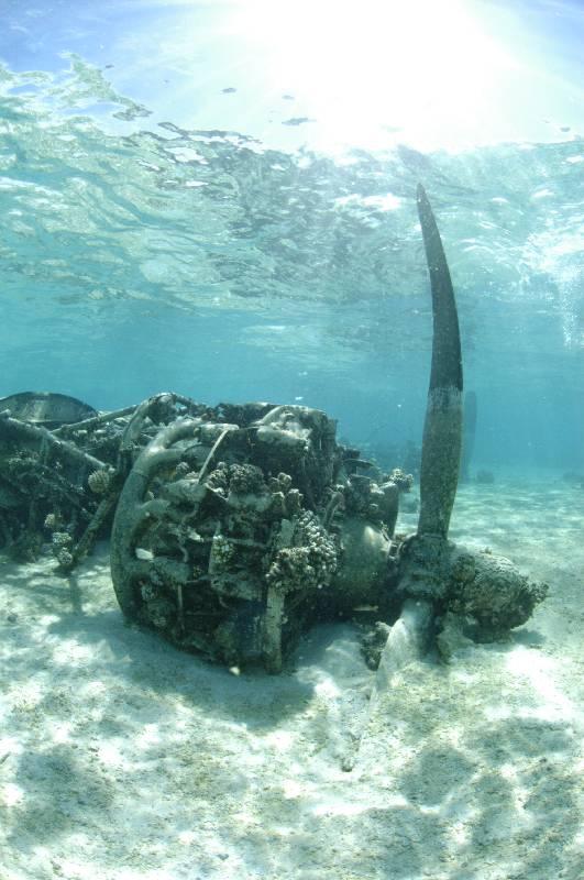 bikini-atoll-scuba