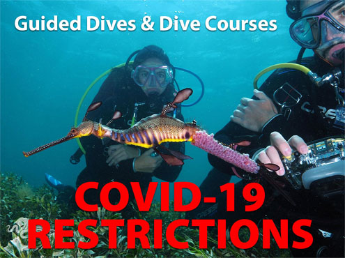 Coronavirus COVID-19 Restrictions - Guided Dives and Dive Courses