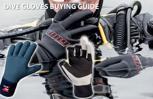 Dive Gloves Buying Guide