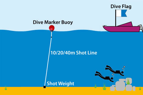 Diving with Shot Lines