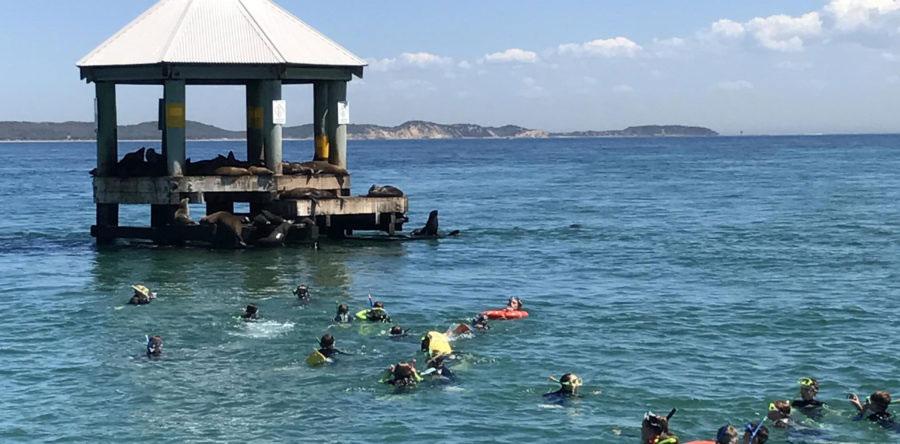 868928d8277e Melbourne Other Dives - The Scuba Doctor