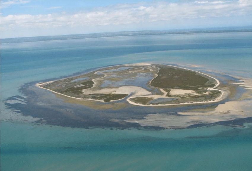 Mudder Island