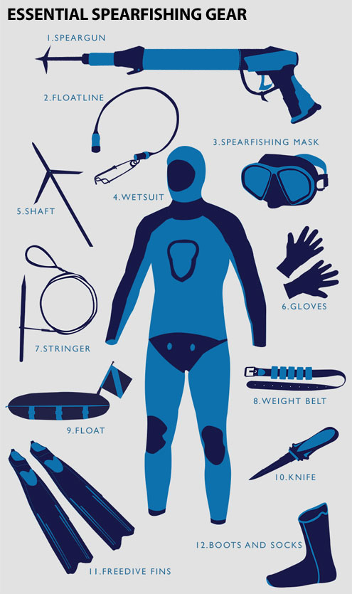 essential spearfishing gear the scuba doctor