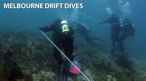 Melbourne Drift Dives by The Scuba Doctor