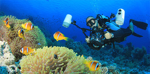 Underwater Photography and Videography from The Scuba Doctor
