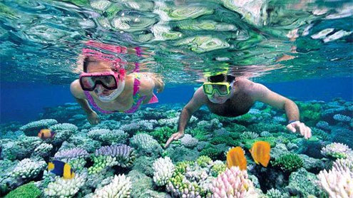 Using Your Snorkelling Gear